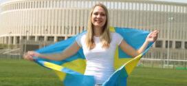 عقد عمل السويد